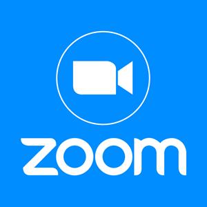 Web4Business - Zoom